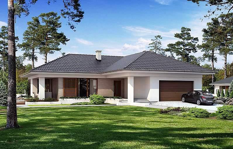 кетчупом венгерские немецкие проекты одноэтажных домов до 180 м2 игральных костях