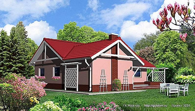 Проект Э231 одноэтажный дом - коттедж Общая площадь 119,8 м2